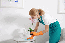 Residential & House Cleaning Services Residential & House Cleaning Services